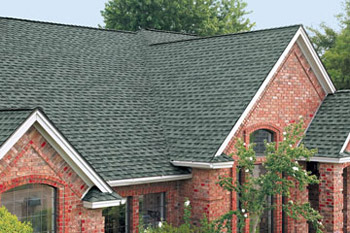 newtco, llc residential roof